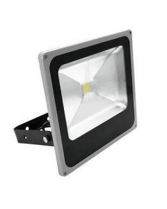 VUOKRAUS - EUROLITE LED FL-50 COB LED 50W strobe 120 IP54 on