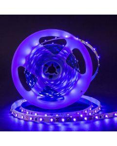 ELED UV 5m UV LED nauha setti IP65 12V