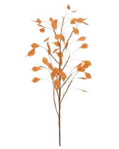 EUROPALMS 100cm Aronianoksa oranssi