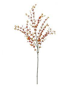 EUROPALMS 110cm Eukalyptusoksa oranssi