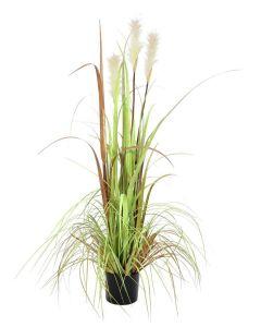 EUROPALMS 120cm Villinä kasvanut ruoho