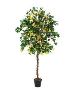 EUROPALMS 150 cm Ihmeköynnös keltainen
