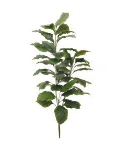 EUROPALMS 150 cm Kirjolehti puutarhurinruukussa