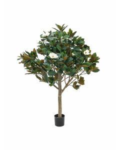 EUROPALMS 150 cm Magnoliapuu kukilla