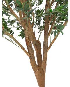 EUROPALMS 250 cm Jättimäinen Olivipuu
