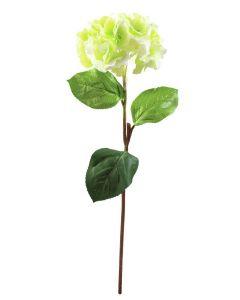 EUROPALMS 76cm Hortensia vihreä