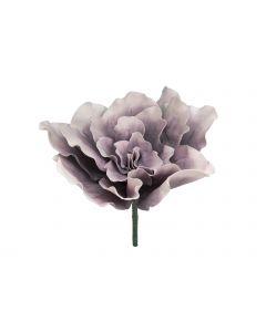 EUROPALMS 80cm Jättikukka väri ruusu