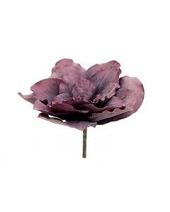 EUROPALMS 80cm Jättikukka väri vanha ruusu