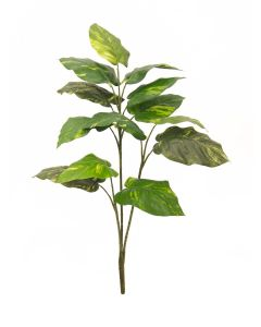 EUROPALMS 90 cm Vehka vihreä-keltaiset lehdet