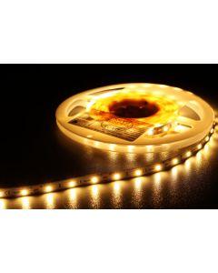 MW LIGHTING HQS 2835 Warm White 5m LED-nauha 12V
