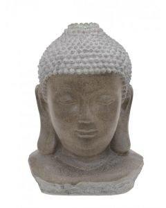 EUROPALMS Vesilähde Budhan pää