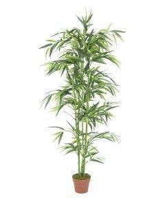 EUROPALMS 150cm Bambu vihreillä ruo'oilla