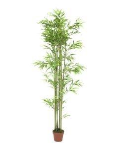 EUROPALMS 180cm Bambut vihreillä ruo'oilla