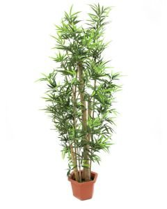 EUROPALMS 150cm Bambu aidoilla ruo'oilla