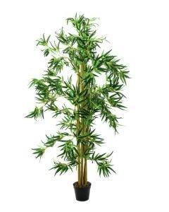 EUROPALMS 150cm Bambu usealla aidoilla rungolla