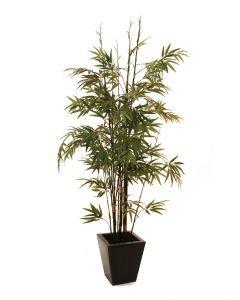 EUROPALMS 152cm Bambu mustilla tekorungoilla