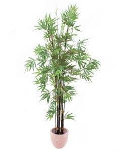 EUROPALMS 210cm Bambu mustilla tekorungoilla