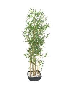 EUROPALMS 150cm Bambu vaalea deco-kulhossa
