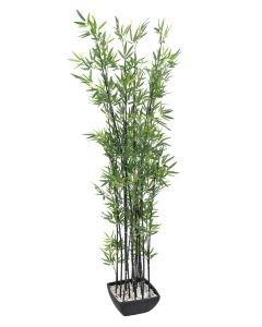 EUROPALMS 180cm Bambu tumma deco-kulhossa