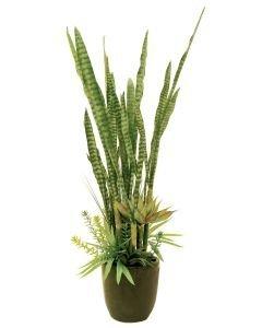 EUROPALMS 190cm Mehevä sekoitus autiomaan kasveja