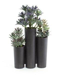 EUROPALMS 43cm Mehevä sekoitus autiomaan kasveja