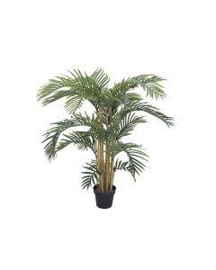 europalms-140cm-kentiapalmu puu