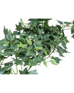 EUROPALMS 100cm Muraattiköynnös vihreä