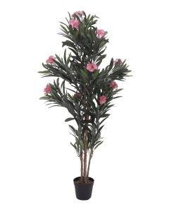 EUROPALMS 150cm Oleanteripuu vaaleanpunaisilla kukilla