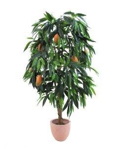EUROPALMS 165cm Mangopuu hedelmillä
