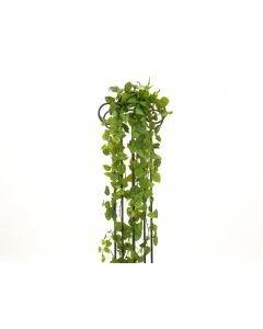 EUROPALMS 170cm kultaköynnös vihreä