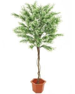 EUROPALMS 175cm Sääskiruoho runko liaanipuuta