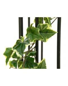 EUROPALMS 180cm Hollannin muraattiköynnös premium vihreä-valkoinen