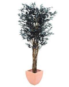 EUROPALMS 180cm Limoviikuna mustat lehdet