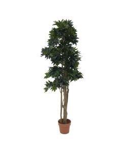 EUROPALMS 180cm Valimeren metsäpuu