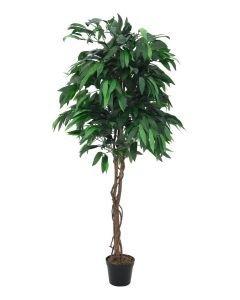 EUROPALMS 180cm Viidakko mangopuu