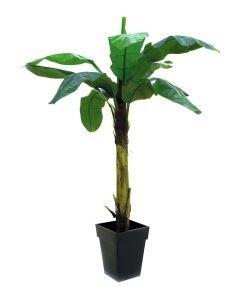 EUROPALMS 220cm Banaanipuu