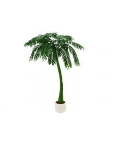 EUROPALMS 300cm Palmu