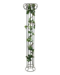EUROPALMS 350cm Murattiköynnös vihreä