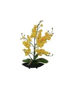 EUROPALMS 40cm Orkidea-asetelma keltainen