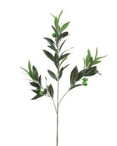 EUROPALMS 6kpl 68cm Oliivinoksa oliiveilla