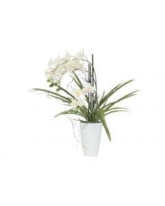 EUROPALMS 70cm Orkidea-asetelma väri valkoinen
