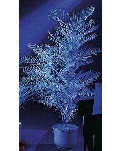 EUROPALMS 90cm Kentiapalmu UV-aktiivinen