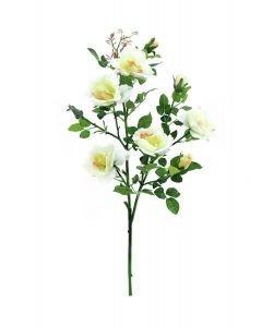 EUROPALMS 90cm Ruusunoksa piikeillä, valkoinen