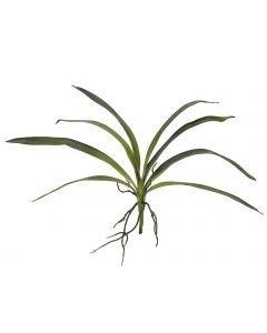 EUROPALMS 45cm Orkidean lehdet ilmajuurilla