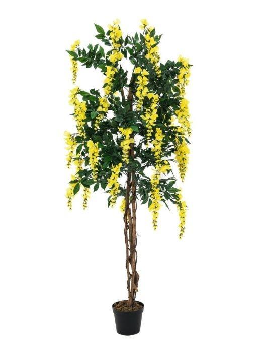 EUROPALMS 180cm Japaninsinisade keltainen