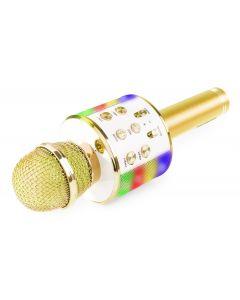 FENTON KM15G karaoke mikrofoni kaiuttimella