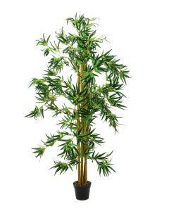 EUROPALMS 210 cm Bambu usealla aidolla rungolla