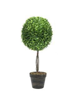 EUROPALMS 60cm Puksipuu kirkas vihreä