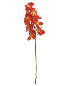 EUROPALMS 70cm Orkidea väri oranssi