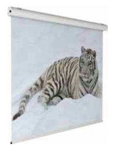 SCREENINT-EIKON-Pure-White-240-180-cm-valkokangas